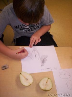 Рисунок в резьбе - Урок резьбы по дереву. Резьба по дереву для начинающих